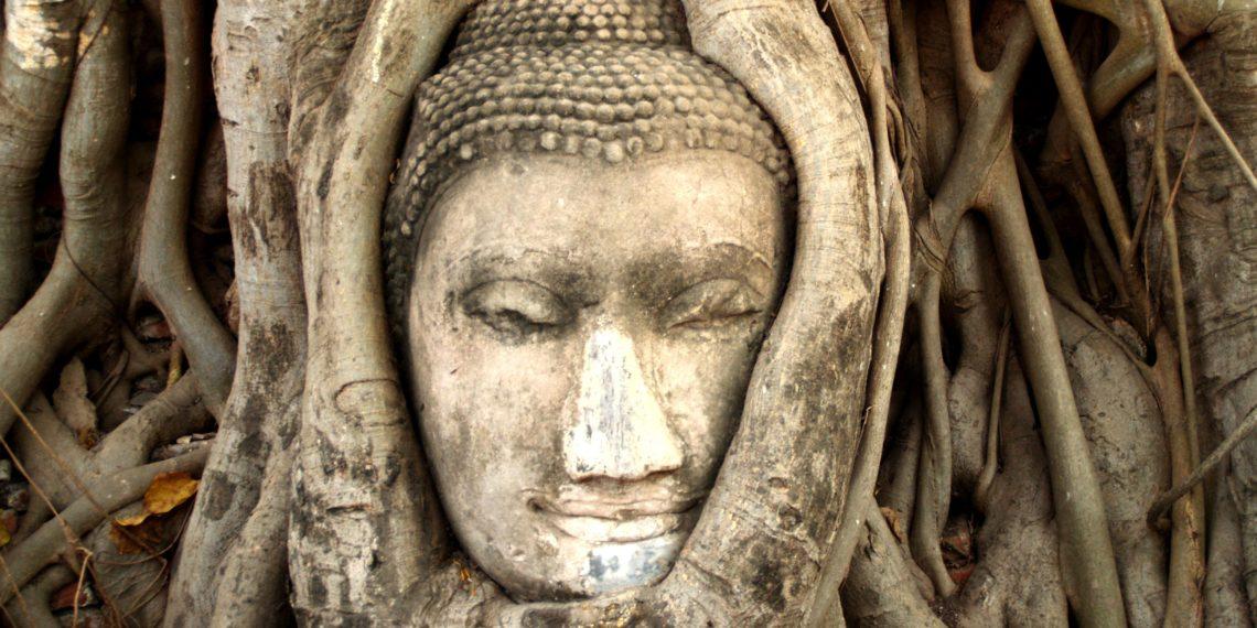 Visszateker és Stop: a jóga története