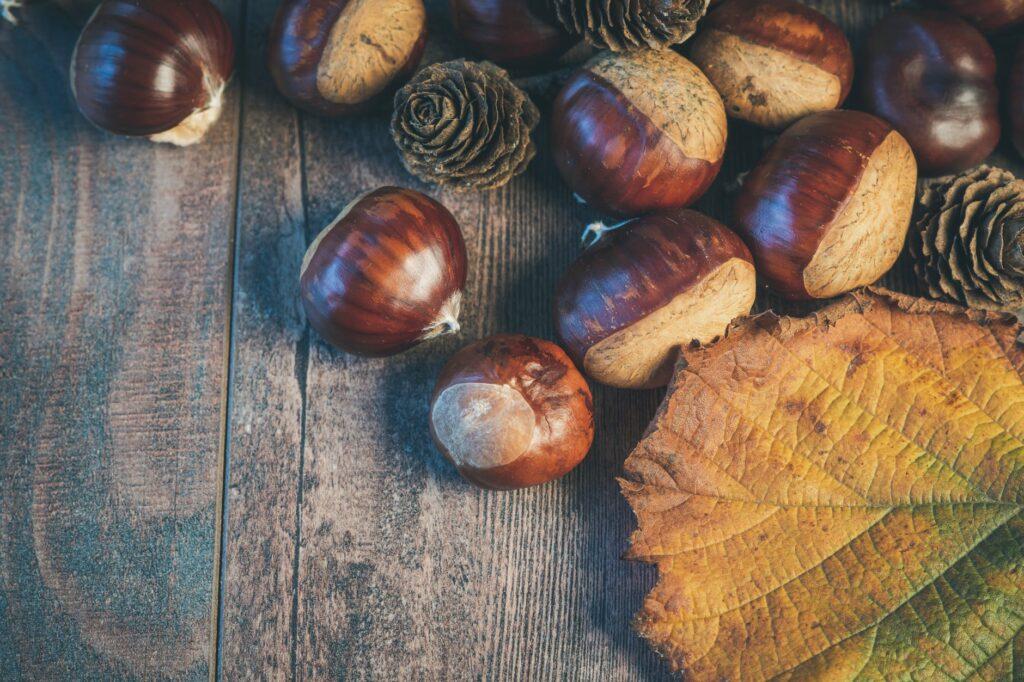 Őszi dekorötletek termésekből