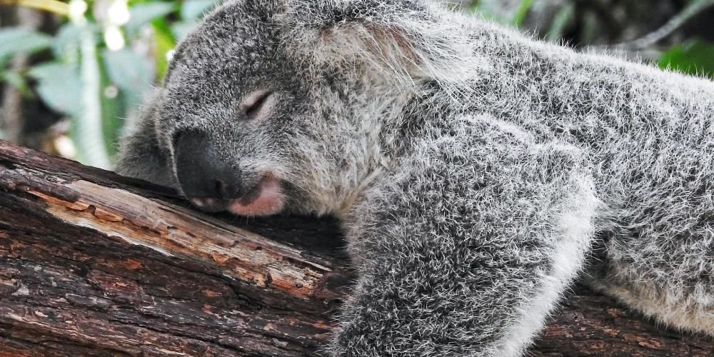 Alvás szokások, melyek segítenek a pihentetőbb alvásban
