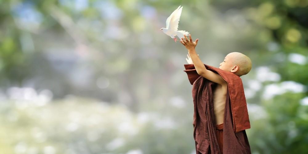 A szerető-kedvesség, azaz a Metta meditáció előnyei és gyakorlata